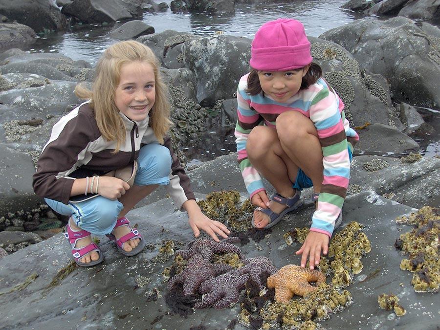 Children with starfish
