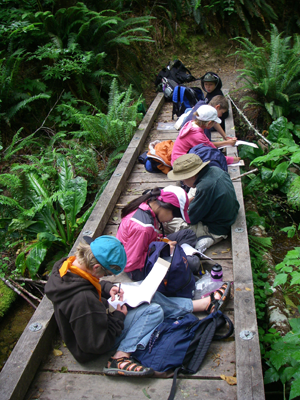 Students learning on the trail
